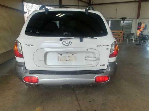 2004 Hyundai Santa Fe GLS | JOPPA, MD | Auto Auction of Baltimore  in JOPPA, MD
