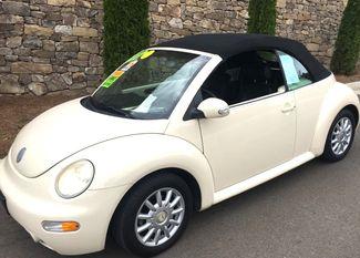 2004 Volkswagen New Beetle GLS Knoxville, Tennessee 2