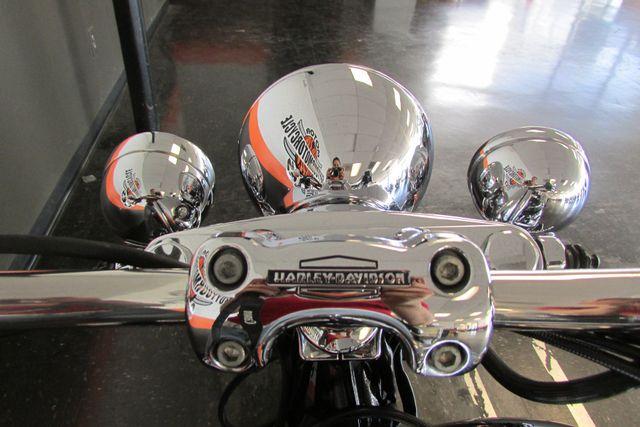 2005 Harley-Davidson Softail® Deluxe Arlington, Texas 28