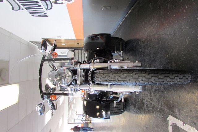 2005 Harley-Davidson Sportster® 1200 Custom Arlington, Texas 4