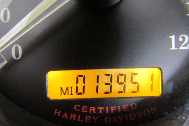 2005 Harley-Davidson Sportster® 1200 Custom Arlington, Texas 24