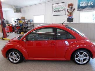 2005 Volkswagen New Beetle GLS | Litchfield, MN | Minnesota Motorcars in Litchfield MN