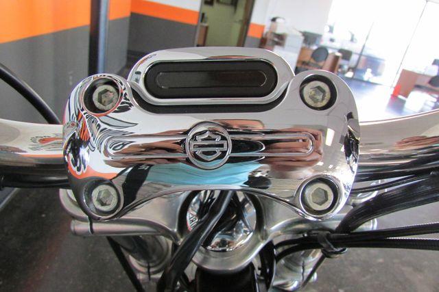 2006 Harley-Davidson Dyna Glide Low Rider® Arlington, Texas 27