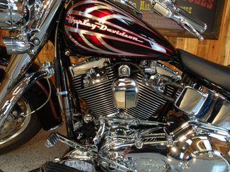 2006 Harley-Davidson Softail® Deluxe FLSTNI Anaheim, California 19