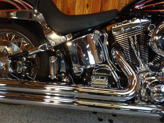 2006 Harley-Davidson Softail® Deluxe FLSTNI Anaheim, California 8