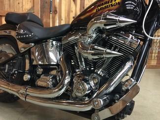 2006 Harley-Davidson Softail® Springer® Softail® Anaheim, California 10