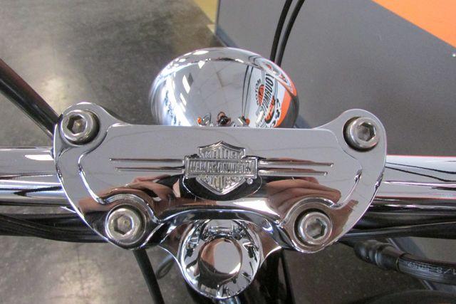 2006 Harley-Davidson Softail® Standard Arlington, Texas 36