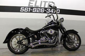 2006 Harley Davidson Softail Springer Classic Heritage FLSTSCI Boynton Beach, FL 40