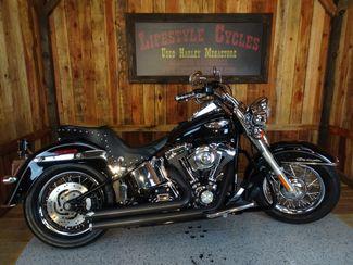 2007 Harley-Davidson Softail® Deluxe Anaheim, California 10