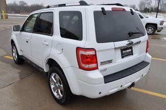 2008 Ford Escape Limited Bettendorf, Iowa 25