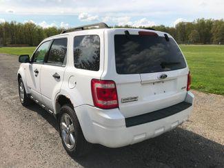 2008 Ford Escape XLT Ravenna, Ohio 2