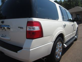 2008 Ford Expedition Limited Batesville, Mississippi 13