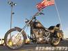 2008 Harley-Davidson SOFTAIL CUSTOM FXSTC CUSTOM FXSTC McHenry, Illinois
