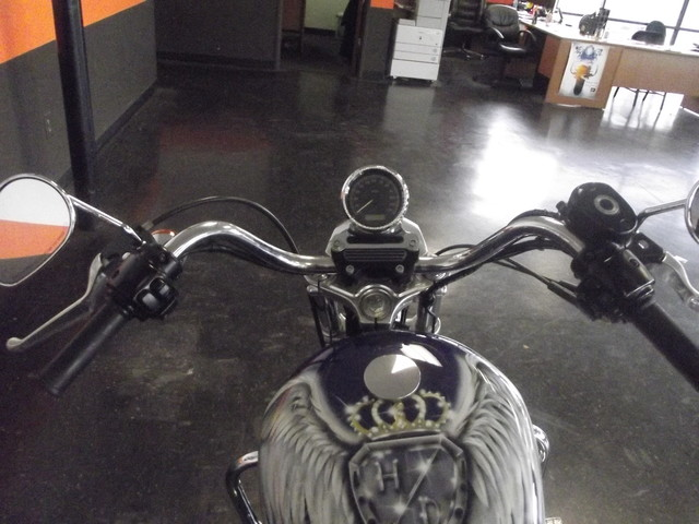 2008 Harley-Davidson Sportster 883 LOW XL883L CUSTOM PAINT Arlington, Texas 13