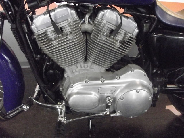 2008 Harley-Davidson Sportster 883 LOW XL883L CUSTOM PAINT Arlington, Texas 5