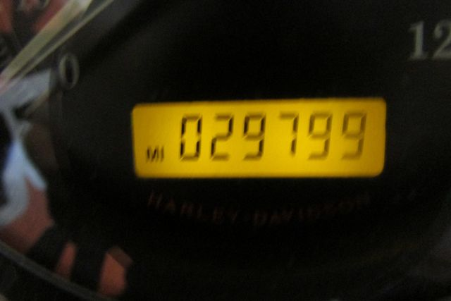 2008 Harley-Davidson Sportster® 1200 Custom Arlington, Texas 26