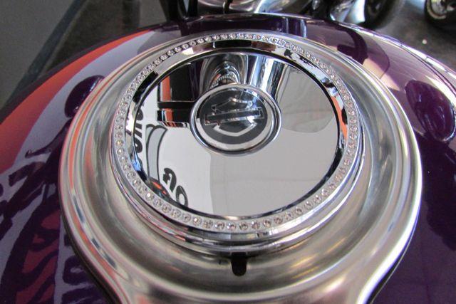 2008 Harley-Davidson Sportster® 1200 Custom Arlington, Texas 25