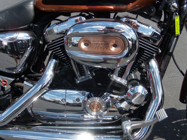 2008 Harley-Davidson Sportster® 1200 Custom Ephrata, PA 8