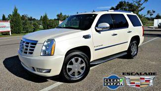 2009 Cadillac Escalade   Clean CARFAX DVD TV | Palmetto, FL | EA Motorsports in Palmetto FL