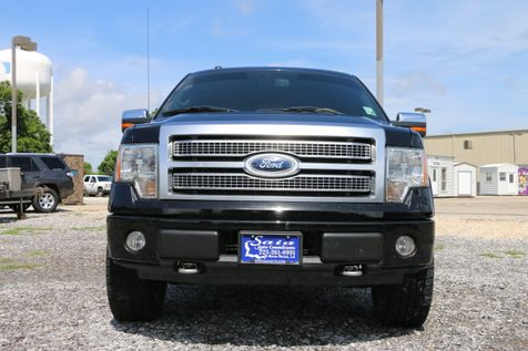 2009 Ford F150 Supercrew Platinum Crew Cab 4WD 5.4 V8 Navi Roof Sony Stereo Tow Pkg Loaded ONE OWNER SUPER CLEAN CARFAX  | Baton Rouge , Louisiana | Saia Auto Consultants LLC in Baton Rouge , Louisiana
