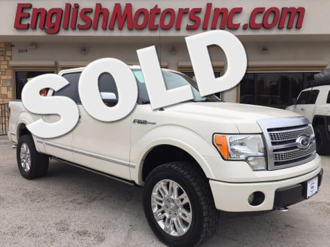 2009 Ford F-150 Platinum in Brownsville, TX