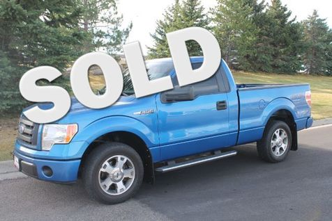 2009 Ford F-150 XLT 2WD in Great Falls, MT