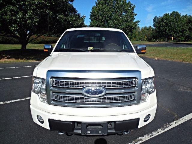 2009 Ford F-150 Platinum Leesburg, Virginia 7