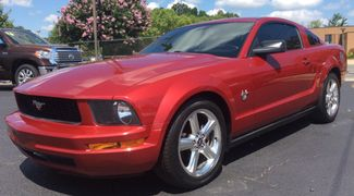 2009 Ford Mustang   city NC  Palace Auto Sales   in Charlotte, NC