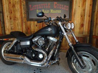 2009 Harley-Davidson Dyna Glide Fat Bob™ Anaheim, California 8