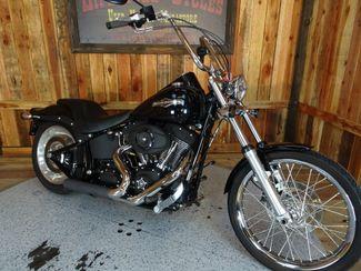 2009 Harley-Davidson Softail® Night Train® Anaheim, California 8