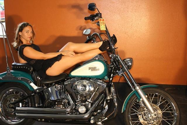 2009 Harley-Davidson Softail® Custom Daytona Beach, FL 6