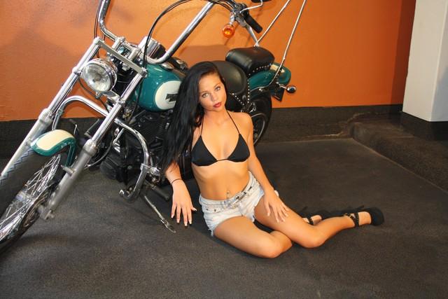 2009 Harley-Davidson Softail® Custom Daytona Beach, FL 3