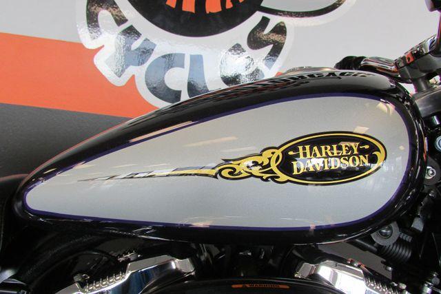2009 Harley Davidson SPORTSTER CUSTOM XL1200C Arlington, Texas 17