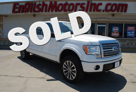 2010 Ford F-150 Platinum in Brownsville, TX