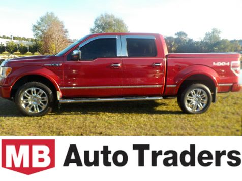 2010 Ford F-150 Platinum in Conway, SC