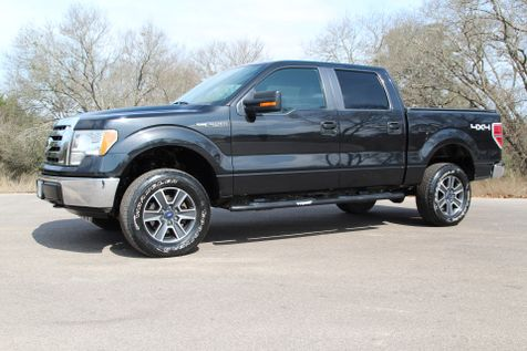 2010 Ford F-150 XLT - 4x4 in Liberty Hill , TX