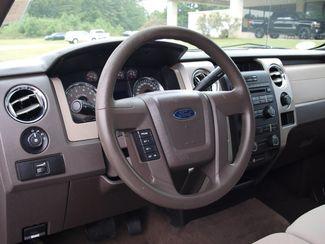 2010 Ford F-150 XLT Lineville, AL 8