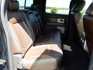 2010 Ford F-150 Platinum Myrtle Beach, SC 16