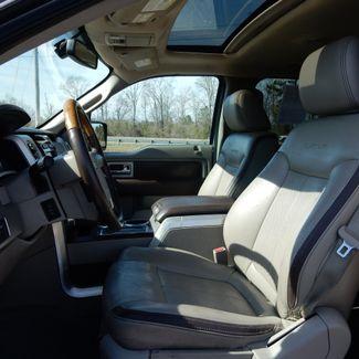 2010 Ford F-150 Platinum Myrtle Beach, SC 8
