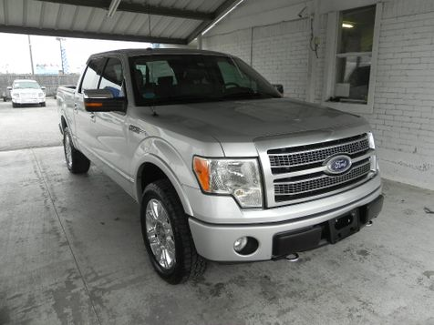 2010 Ford F-150 Platinum in New Braunfels