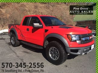 2010 Ford F-150 in Pine Grove PA
