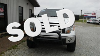 2010 Ford F-150 XL Walnut Ridge, AR