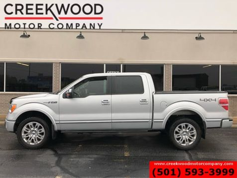 2010 Ford F-150 Platinum Lariat 4x4 Silver Chrome 20s Nav Sunroof in Searcy, AR