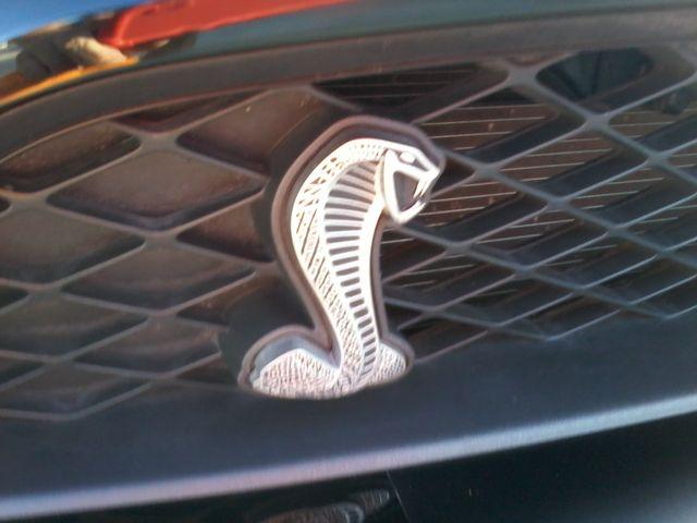 2010 Ford Shelby GT500 San Antonio, Texas 15