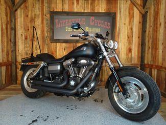 2010 Harley-Davidson Dyna Glide® Fat Bob™ Anaheim, California 8