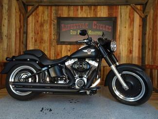2010 Harley-Davidson Softail® Fat Boy® Lo Anaheim, California 11