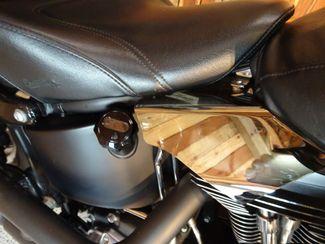 2010 Harley-Davidson Softail® Fat Boy® Lo Anaheim, California 20