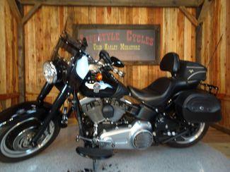 2010 Harley-Davidson Softail® Fat Boy® Lo Anaheim, California 1
