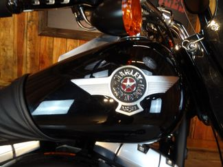 2010 Harley-Davidson Softail® Fat Boy® Lo Anaheim, California 14