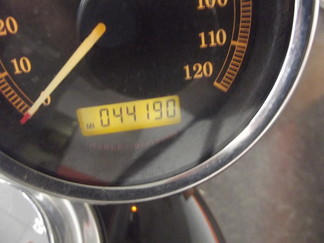 2010 Harley-Davidson Sportster 1200 Custom XL1200C Arlington, Texas 6